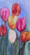 Yupo_tulips_crp